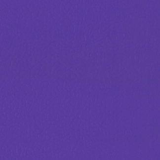 LG Leisure Sport Purple LES6701