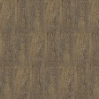 Ultimo Bear Oak 24851